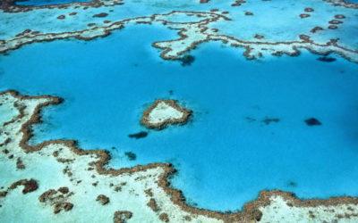 La Grande Barrière de Corail pourrait obtenir ses propres droits